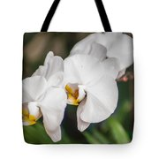 Beautiful White Orchids Flower Bloom Tote Bag