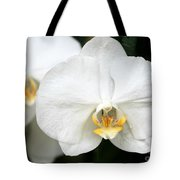 Beautiful White Phanaenopsis Orchids Tote Bag
