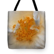 Beautiful White Rose Tote Bag