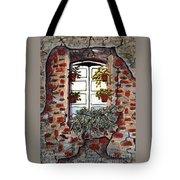 Beauty After Destruction Window Art Prints Tote Bag