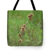 Prickly Histle Beauty Among The Grasses Tote Bag