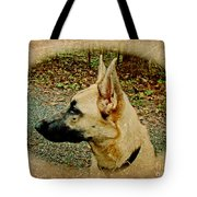 Beauty And Brains Tote Bag