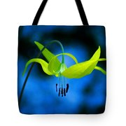 Beauty And Grace 1 Tote Bag