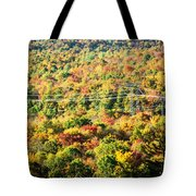 Beauty And The Grid Tote Bag