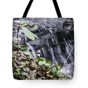 Beauty And The Rapids Tote Bag