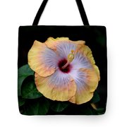 Beauty Before Age Tote Bag