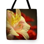 Beauty Beheld Tote Bag