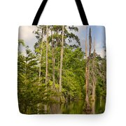 Beauty In A Swamp Tote Bag