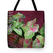Beauty In Decorative Foliage Tote Bag
