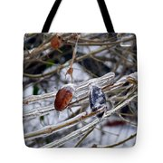 Beauty In Ice Tote Bag