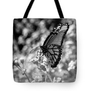 Butterfly Beauty In Nature Tote Bag