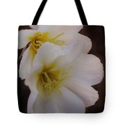 Beauty In The Canyon 2 Tote Bag