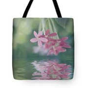 Beauty In The Mirror Tote Bag