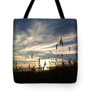 Beauty In The Sky Tote Bag