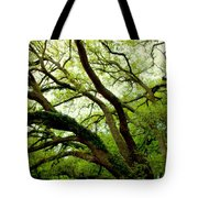 Beauty In Time Tote Bag