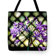 Beauty Lines Tote Bag