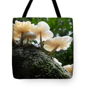 Beauty Of Mushrooms Argentina Tote Bag