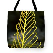 Beauty Of Nature Fern 3 Tote Bag