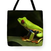 Beauty Of Tree Frogs Costa Rica 1 Tote Bag