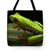 Beauty Of Tree Frogs Costa Rica 2 Tote Bag