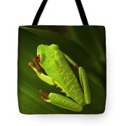Beauty Of Tree Frogs Costa Rica 6 Tote Bag