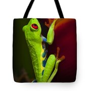 Beauty Of Tree Frogs Costa Rica 9 Tote Bag