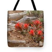 Beauty On 25 Mesa  Tote Bag