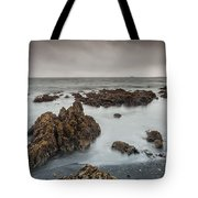 Beauty On A Cloudy Morning Tote Bag