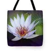 Beauty On The Water Tote Bag