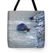 Beaver Chews On Stick Tote Bag