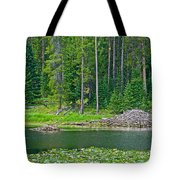 Beaver Dam In Heron Pond In Grand Teton National Park-wyoming Tote Bag