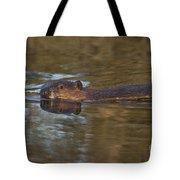 Beaver Swimming Tote Bag