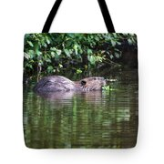 beaver swims in NC lake Tote Bag