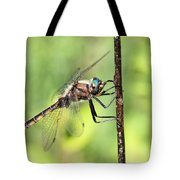 Beaverpond Baskettail Dragonfly Tote Bag