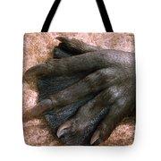 Beavers Hind Foot Tote Bag