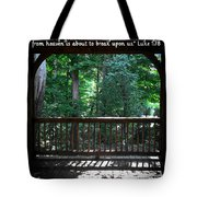 Because Of Gods Tender Mercy Tote Bag