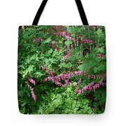 Bed Of Bleeding Hearts Tote Bag