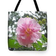 Bedazzled By The Light Louisiana Confederate Rose Tote Bag