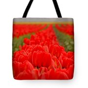 Beds Of Red Tote Bag