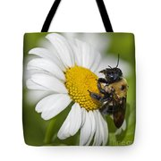 Bee And Daisy Tote Bag