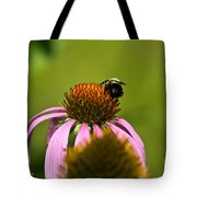 Bee And Echinacea Flower Tote Bag