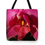 Bee Appeal To Pollinate Tote Bag