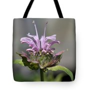 Bee Balm From The Panorama Mix Tote Bag