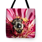 Bee Close Up On Pinkish Red Flower Tote Bag
