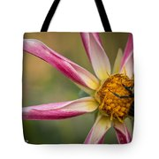 Bee Enjoying A Willie Willie Dahlia Tote Bag