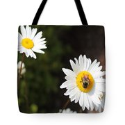 Bee On A Daisy 2 Tote Bag