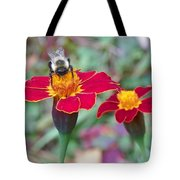 Bee On A Marigold 2 Tote Bag
