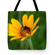 Bee On A Smooth Oxeye Tote Bag