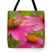 Bee On Coneflower Tote Bag