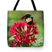 Bee On Flower Cluster Tote Bag